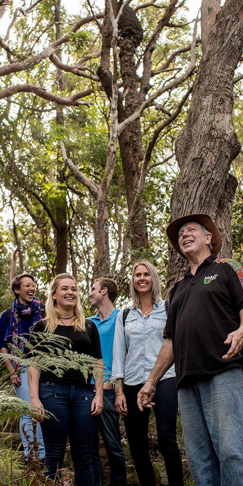 Guringai Aboriginal Tours